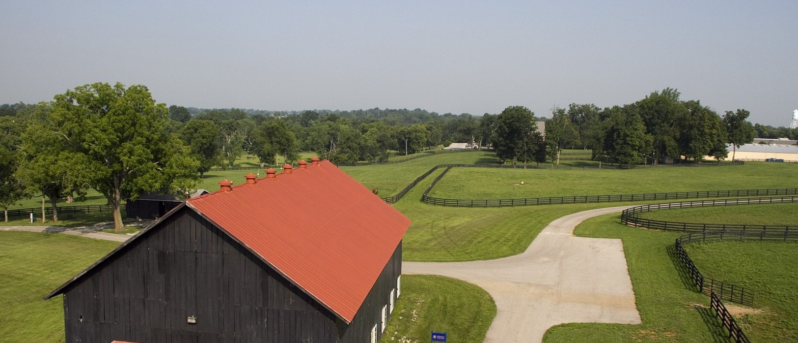 Overlook of barn