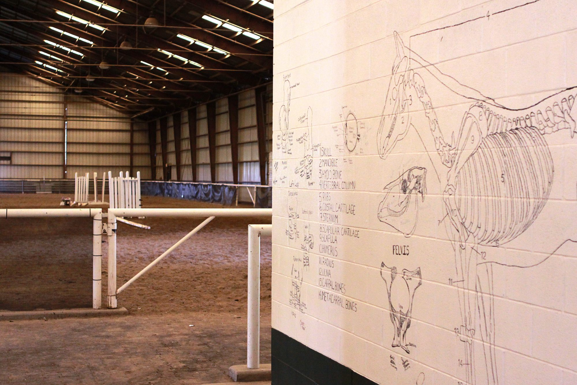 Inside the Equestrian Center